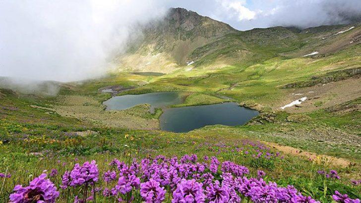 Ambarlı Gölü ( Balıklı Göl )
