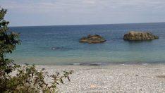Hamidiye Plajı