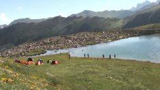 Karmik Gölü